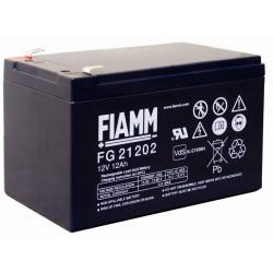 FIAMM 12 - 12